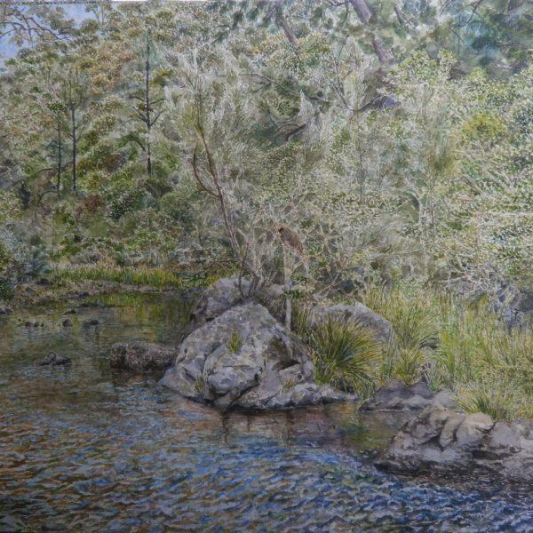 Bellingen River #1